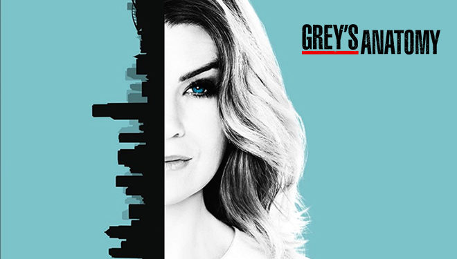 'Grey's Anatomy' Episode Guide (Oct. 5): Harper Avery Returns to Grey Sloan